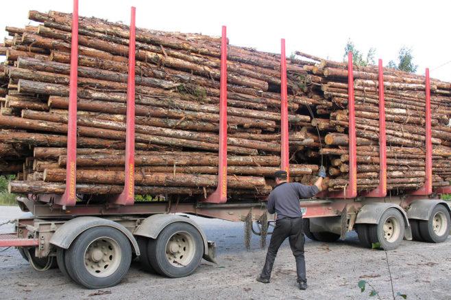 uittonippujen sitomista puutavara-auton kuormatilassa