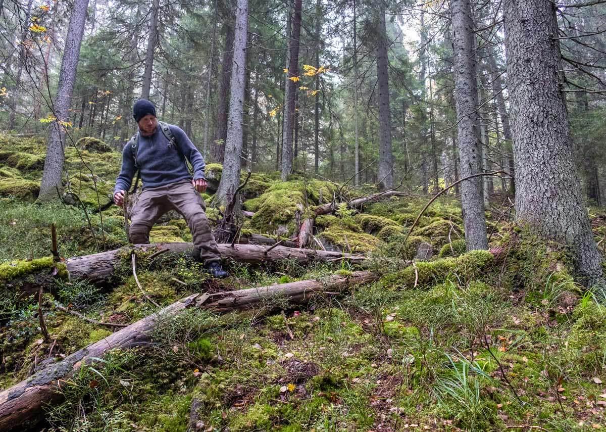 Mies kävelee metsässä.