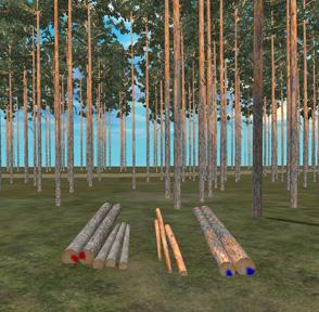 Puutavaralajien tunnistus värimerkintään perustuen. Kuvassa kuusitukit on eroteltu punaisella ja mäntytukit sinisellä värillä kuusi- ja mäntykuitupölkyistä.