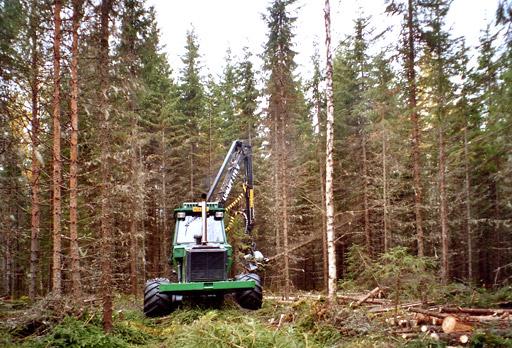 Ensiharvennuksella puiden rinnankorkeusläpimitta on yleensä alle 16 cm.