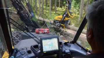 Hakkuukoneenkuljettajan näkökulmasta koneen sisältä kun hän on kaatamassa puita.