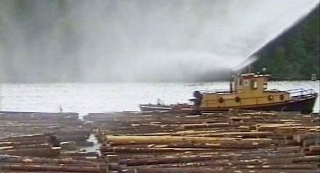 Sorvitukkia kastellaan vesivarastossa puun tasalaatuisuuden varmistamiseksi.