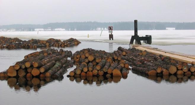 Kelluvat puutavaraniput odottavat uittoa maaliskuussa.