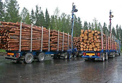 puutavara-autot pudotuspaikalla