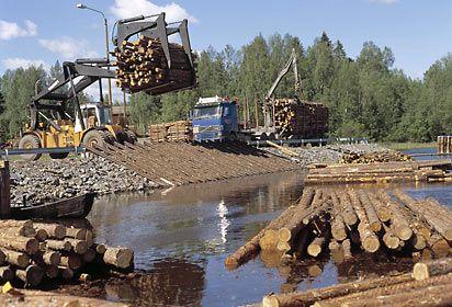 puutavaranipun siirto veteen