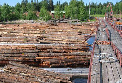 lautassa usealle tehtaalle meneviä puita