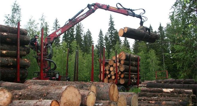 Puukuorman käsittelyä puskurivarastolla