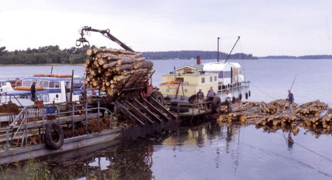 Nippulaa käytetään ranta- ja saarimetsien puutavaran veteensirrossa.