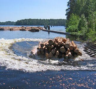 Puutavaranippu veteen Möhköskosken pudotuspaikalla